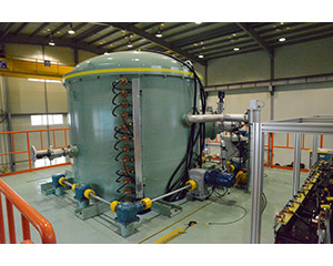 Vacuum chamber, pumps and detector